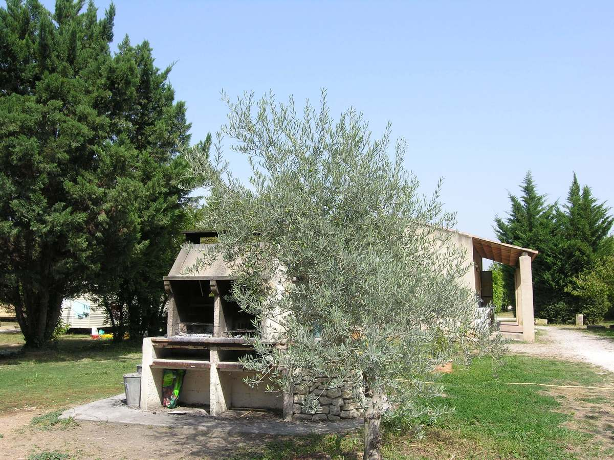 camping les cerisiers luberon