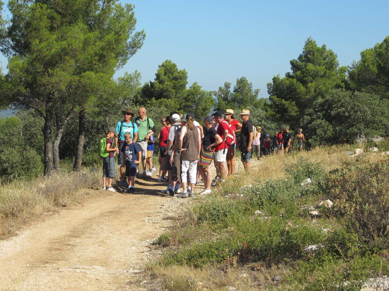 Randonnée camping Les Cerisiers Luberon